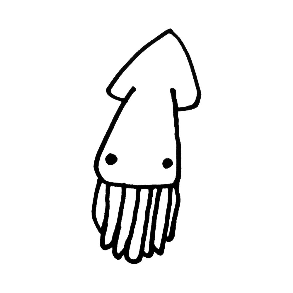 イカの無料イラスト(オーフリー写真素材)