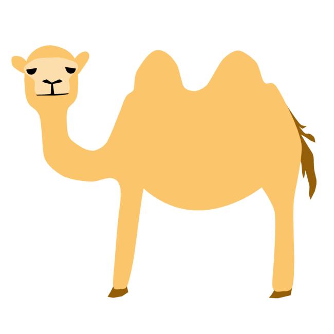 ラクダの画像 p1_29